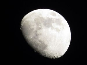 gibbous-moon
