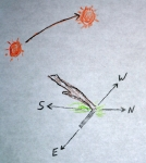 single-stick-method